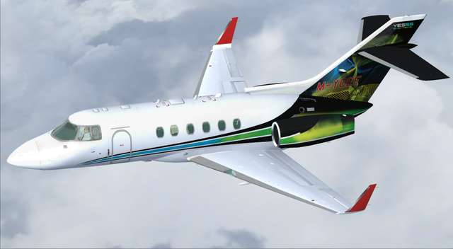 800XP BizJet Livery Pack